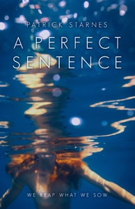 A Perfect Sentence thumb